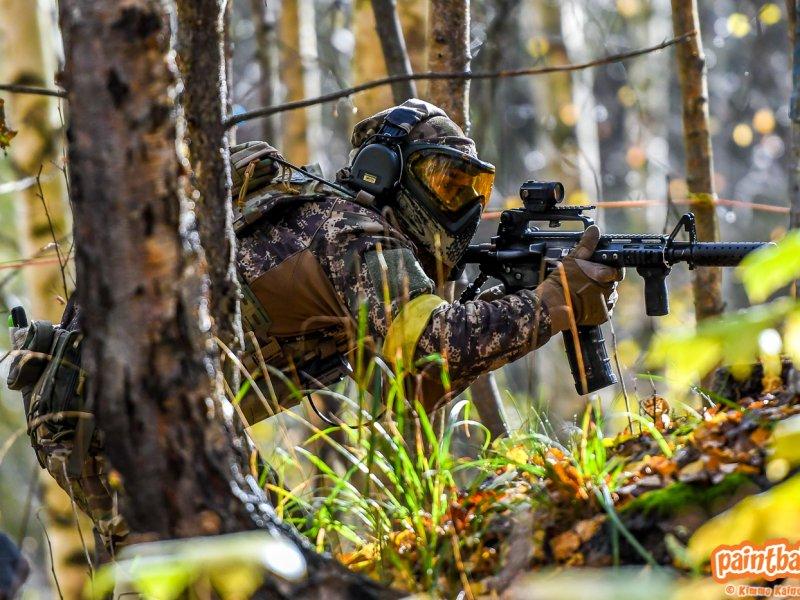 Metsäpelejä lokakuussa 2020